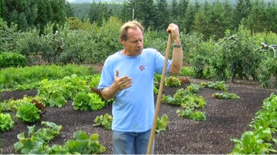 My Home And Garden Back To Eden Vegetable Gardening Everything You Need To Know In One Place