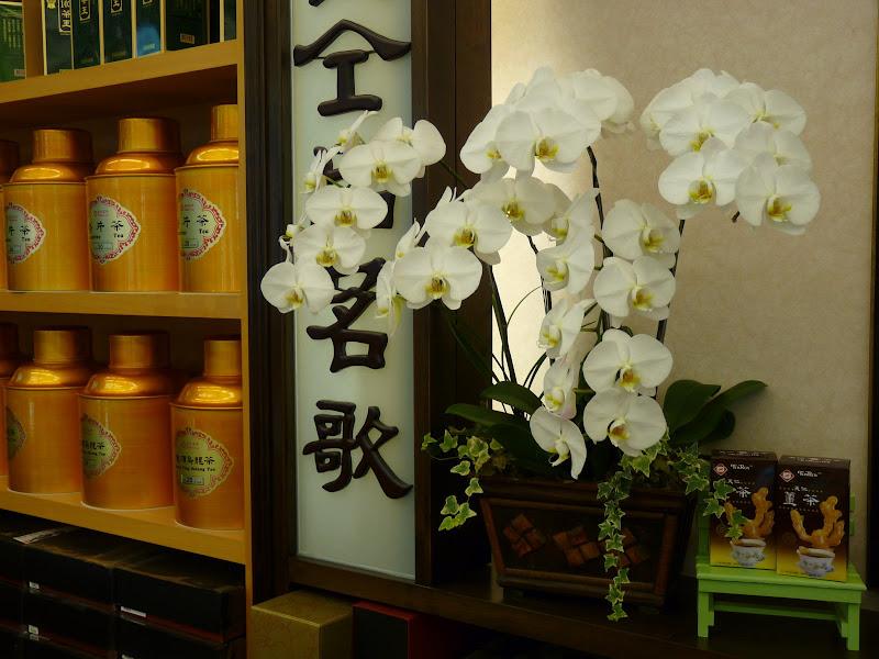 TAIWAN.Dans la région de MIAOLI - P1090584.JPG