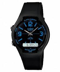 Casio Standard : LTP-1345SG