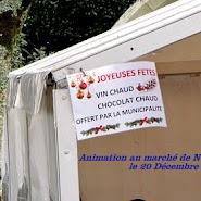 Concert marché de Noël Guidel 20.12.2015 (0).jpg