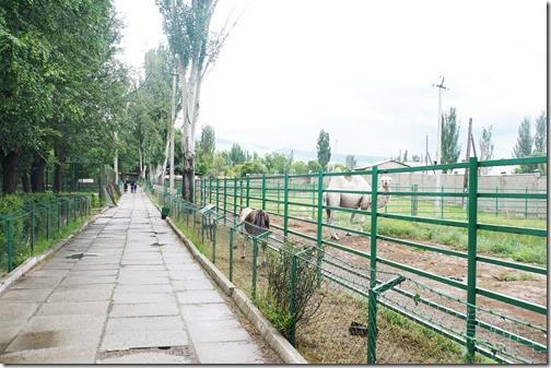 Kyrgyzstan96