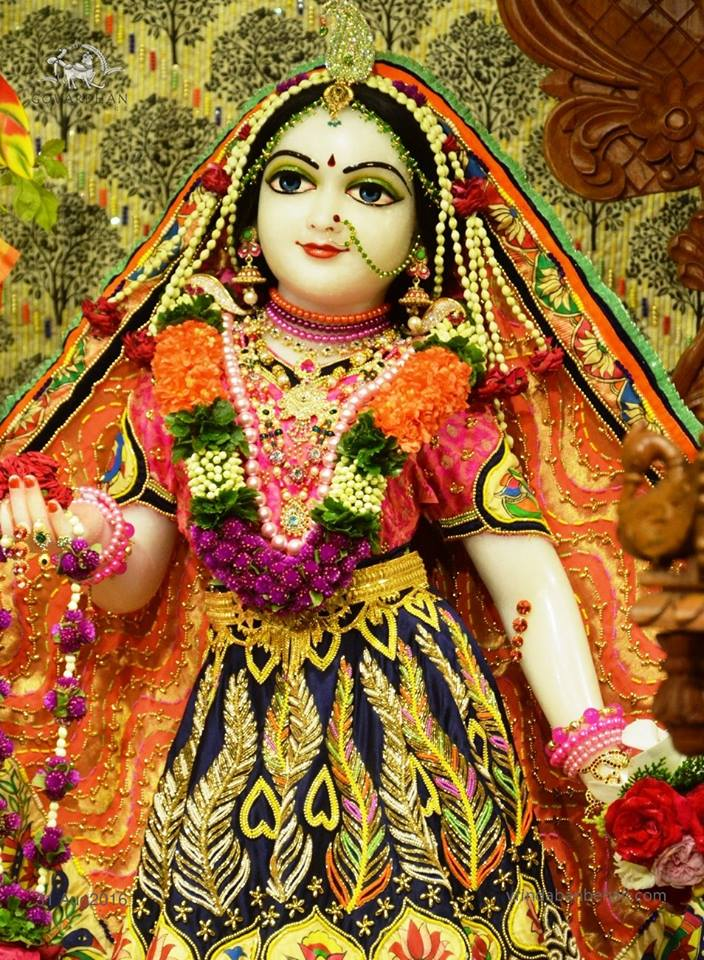 ISKCON Wada Deity Darshan 31 August 2016 (13)
