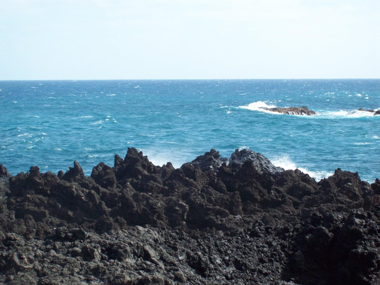 Hawaii Day 5 - 114_1535.JPG