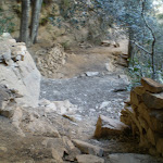 The Colloseum Amphitheatre (10811)