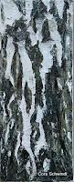 Birkenrinde 1, Öl auf Leinwand, 2005