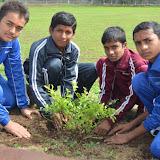 Gurukul Green Revolution (27).jpg