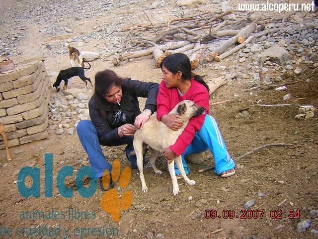 Asistencia Huancavelica por terremoto 2007 (20)