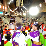 awa odori festival in naka-meguro in Meguro, Tokyo, Japan