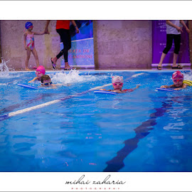 20161217-Little-Swimmers-IV-concurs-0028