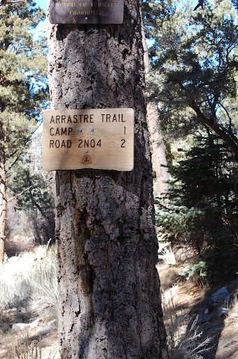 We heard that the Aspen Grove is about 2 miles up the trail, somewere past the Arrastre Trail Camp.
