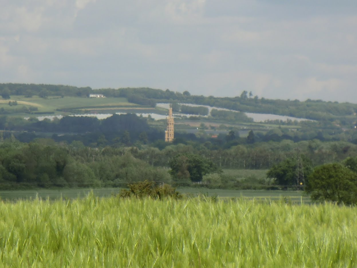 CIMG1574 Distant view of Hadlow Tower from Tudeley