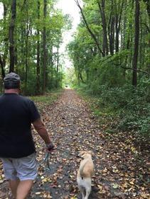 Little Jersey Trail