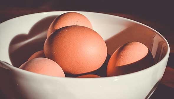 Eggpowder