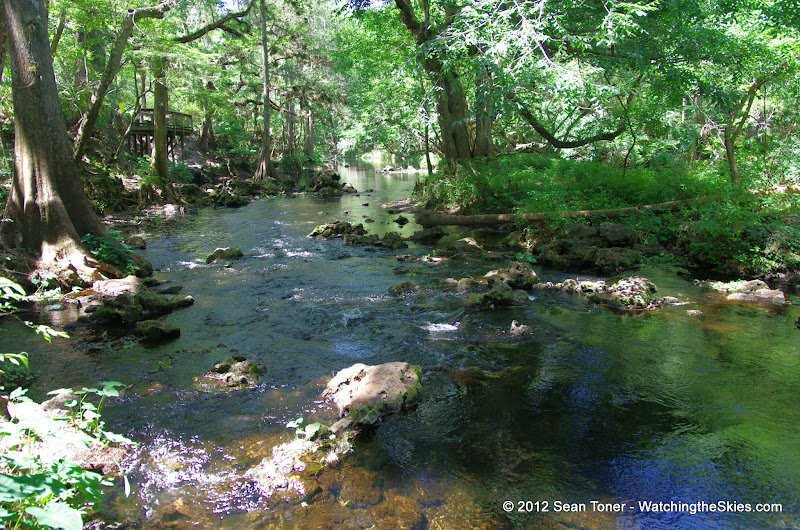 04-04-12 Hillsborough River State Park - IMGP9655.JPG