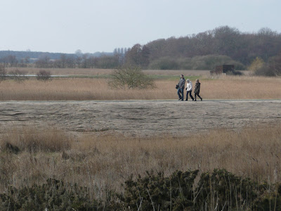 Minsmere New Bank