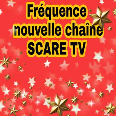 Nouvelle chaîne SCARE TV pour regarder les films américains gratuitement sur Nilesat - voilà la fréquence
