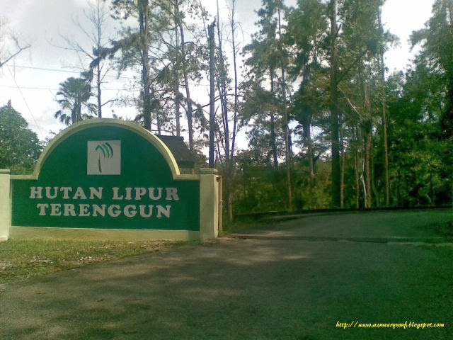 Hutan-Lipur-Terenggun-Recreational-Forest