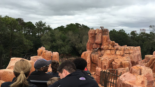 4K ride through POV videos Disney