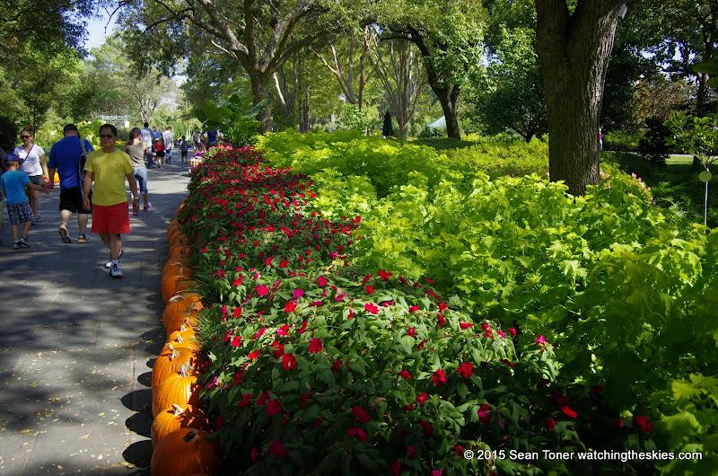 10-26-14 Dallas Arboretum - _IGP4319.JPG