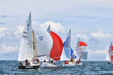 J/24s sailing at Buzzards Bay race weekend