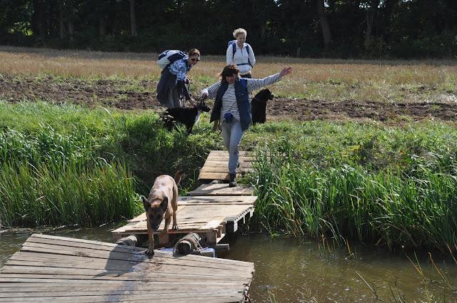 Survival voor Baas en Hond 2012 - DSC_0256.JPG