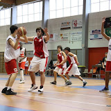Basket 310.jpg