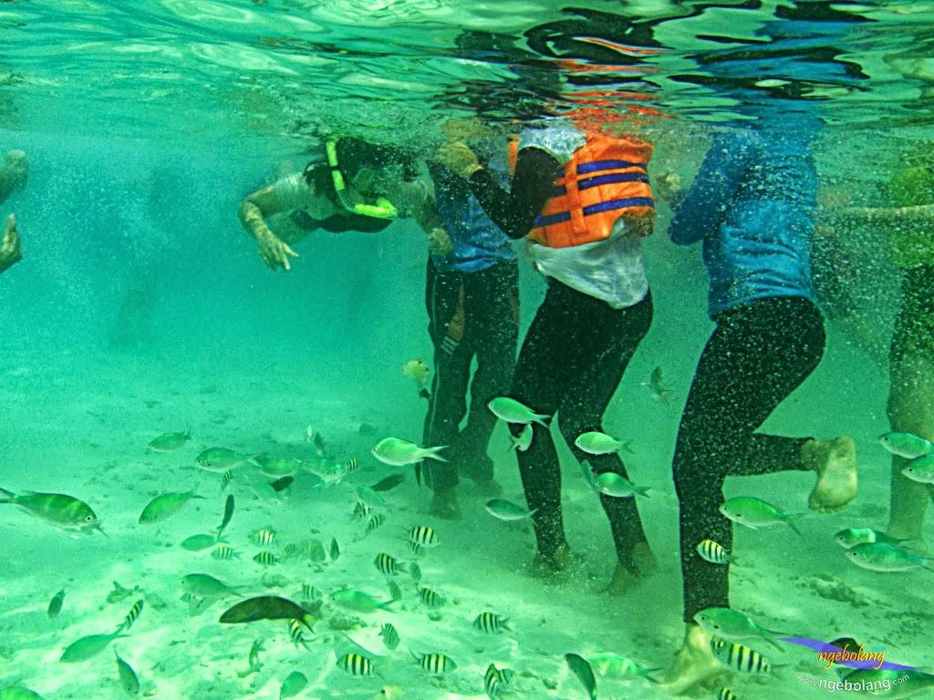 ngebolang-trip-pulau-harapan-olym-7-8-09-2013-01