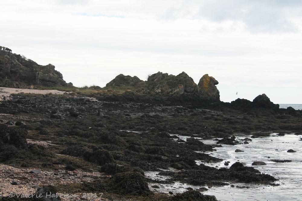 [2-rough-island%5B4%5D]