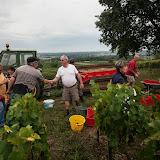 2013 vendanges du chardonnay - 2013%2B09%2B28%2BGuimbelot%2Bvendanges%2Bdu%2BChardonnay%2B123.jpg