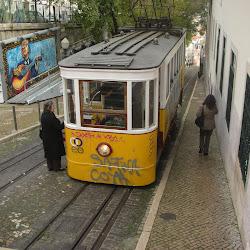 Maratón de Lisboa 2011- (Tomás Alba)