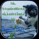 Saludos de Buenos Dias, Frases Bonitas Download for PC Windows 10/8/7