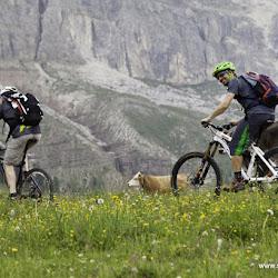 Manfred Stromberg Freeridewoche Rosengarten Trails 07.07.15-9717.jpg