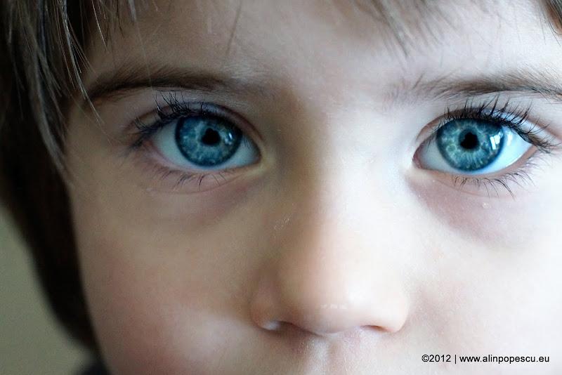 Alin Popescu Photography