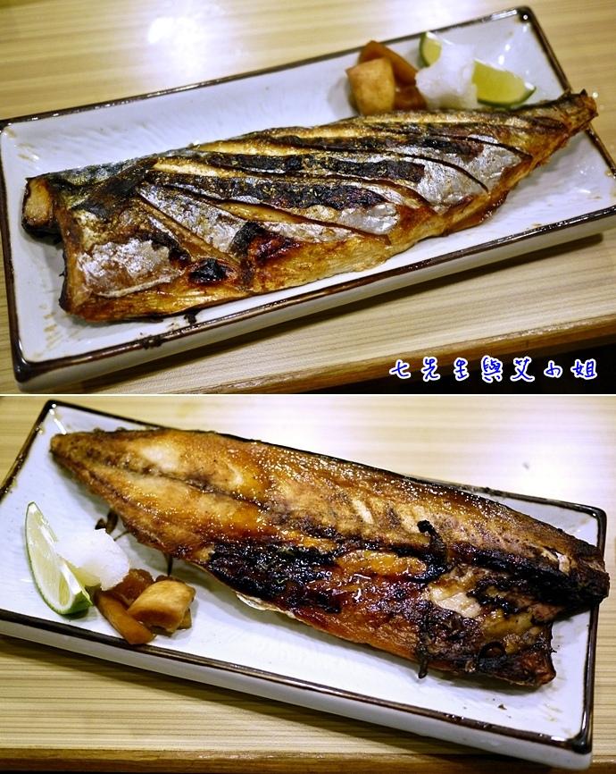 12 鯖魚