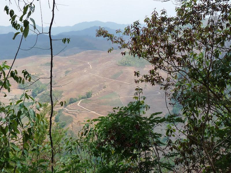 Chine: randonnée xishangbanna, région de Bada - Picture1%2B1041.jpg