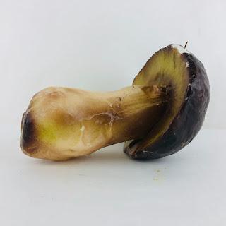 John Derian Mushroom Candle