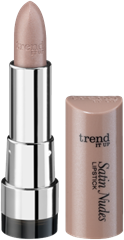 4010355368232_trend_it_up_Satin_Nudes_Lipstick_020