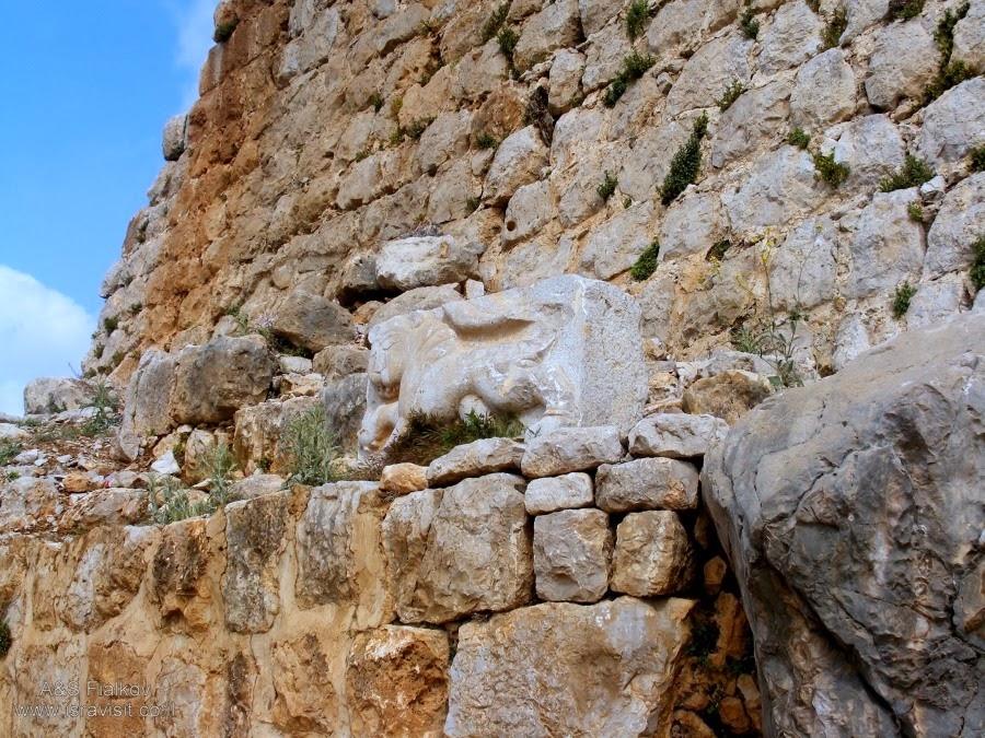 Лев - символ султана Бейбарса в крепости Нимрод. Экскурсия в Голаны. Гид Светлана Фиалкова.