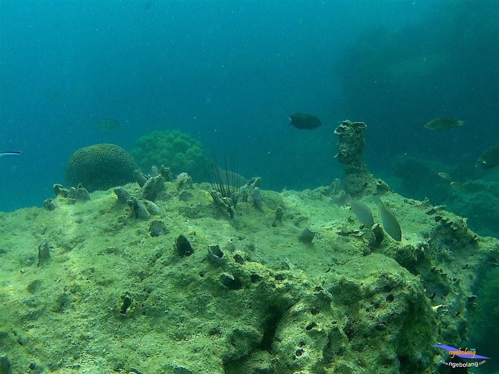 pulau pari 050516 GoPro 56