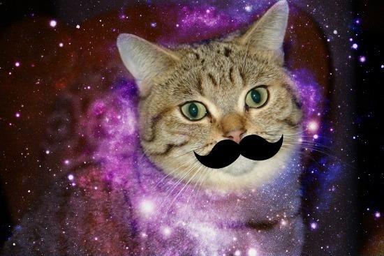 [gatos+galacticos++%281%29%5B2%5D]