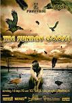 2012-09-16 The Sundag Goose @ Progfrog Blok Nieuwerkerk aan den Ijssel