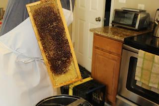 PLC Honey Fiesta 7/10/16 - IMG_3615.JPG