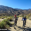palm_canyon_img_1384.jpg