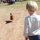 Blessington Farms - 116_5080.JPG