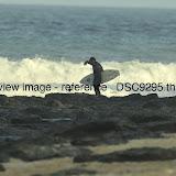 _DSC9295.thumb.jpg