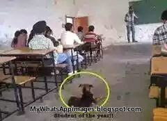 Funny student image hindi joke whatsapp