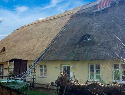 Odnawianie dachu trzcinowego na żółtym budynku