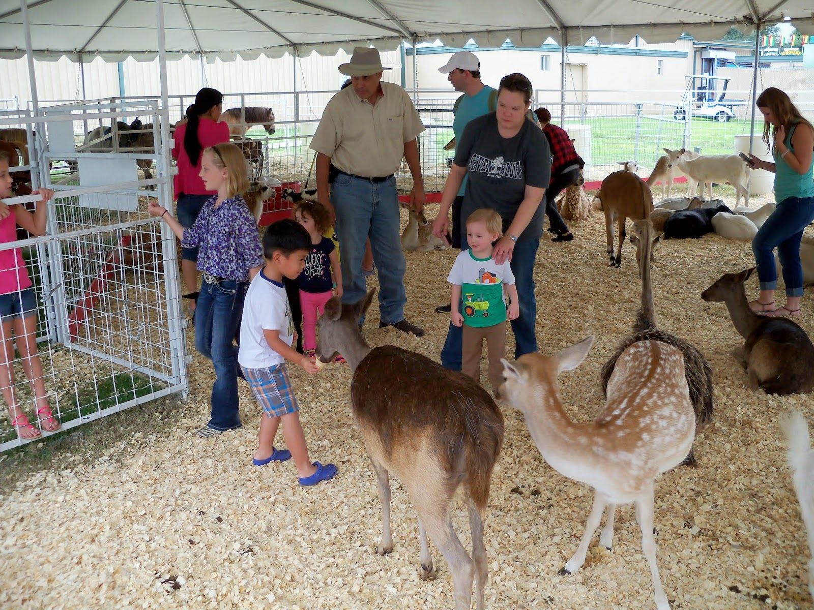 Fort Bend County Fair 2014 - 116_4328.JPG