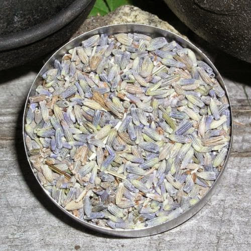 Lavender Flowers Herb Love Protection Sleep Chastity Longevity Purification Happiness