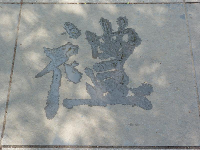 XINJIANG. Dernier jour a Urumqi - P1280798.JPG